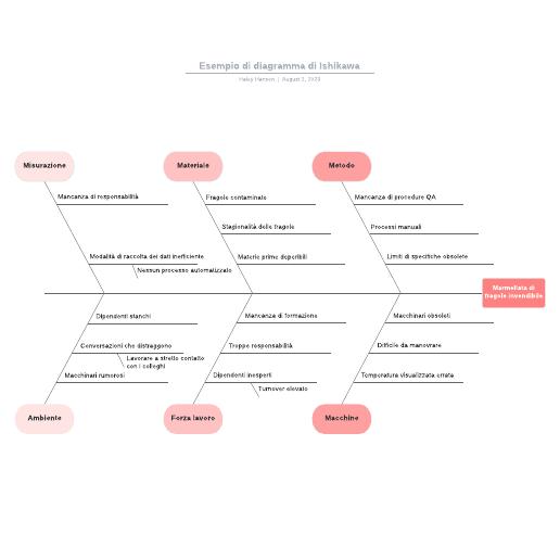 Esempio di diagramma di Ishikawa