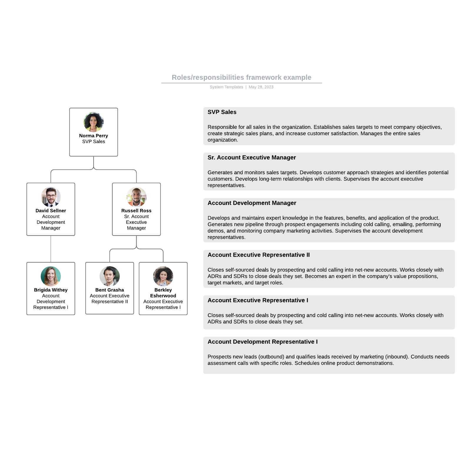 Roles/responsibilities framework example