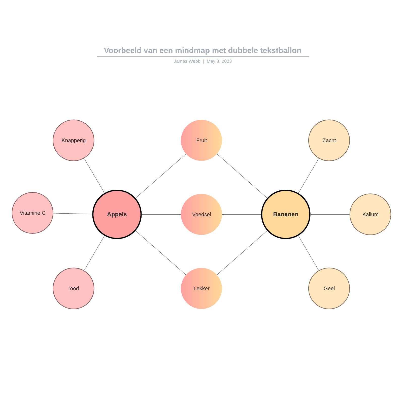 Voorbeeld van een mindmap met dubbele tekstballon