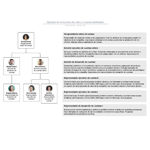 Ejemplo de estructura de roles y responsabilidades