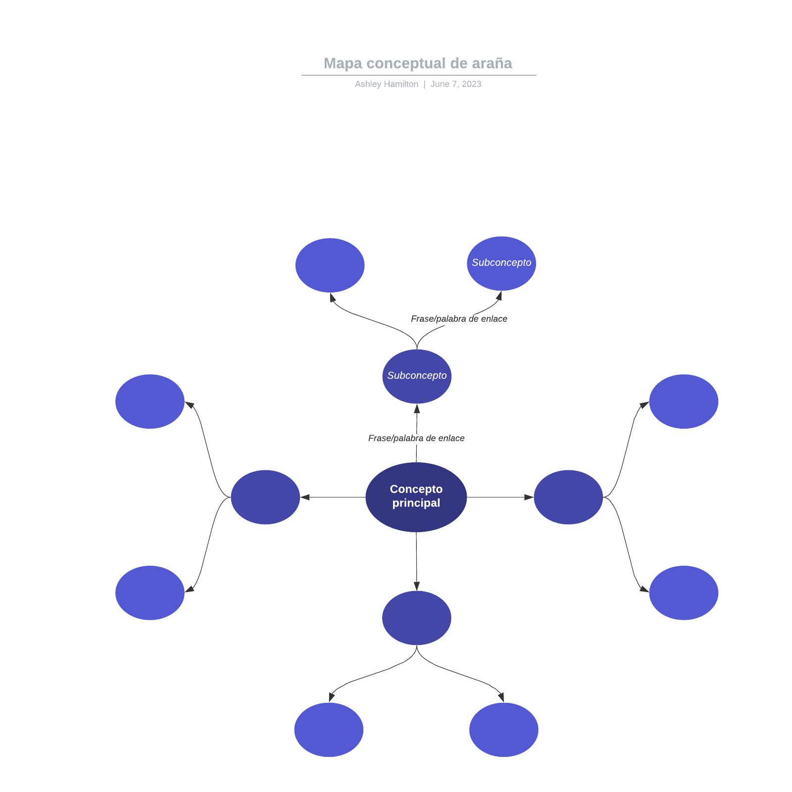 Mapa conceptual de araña