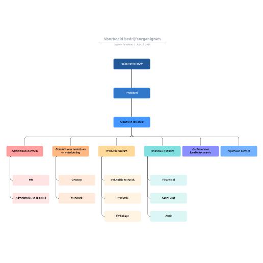 Voorbeeld bedrijfsorganigram