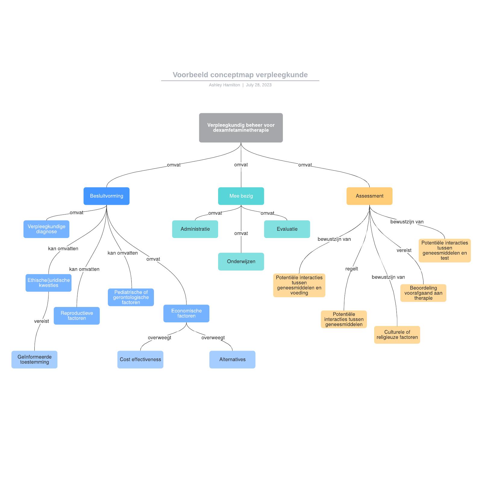 Voorbeeld conceptmap verpleegkunde