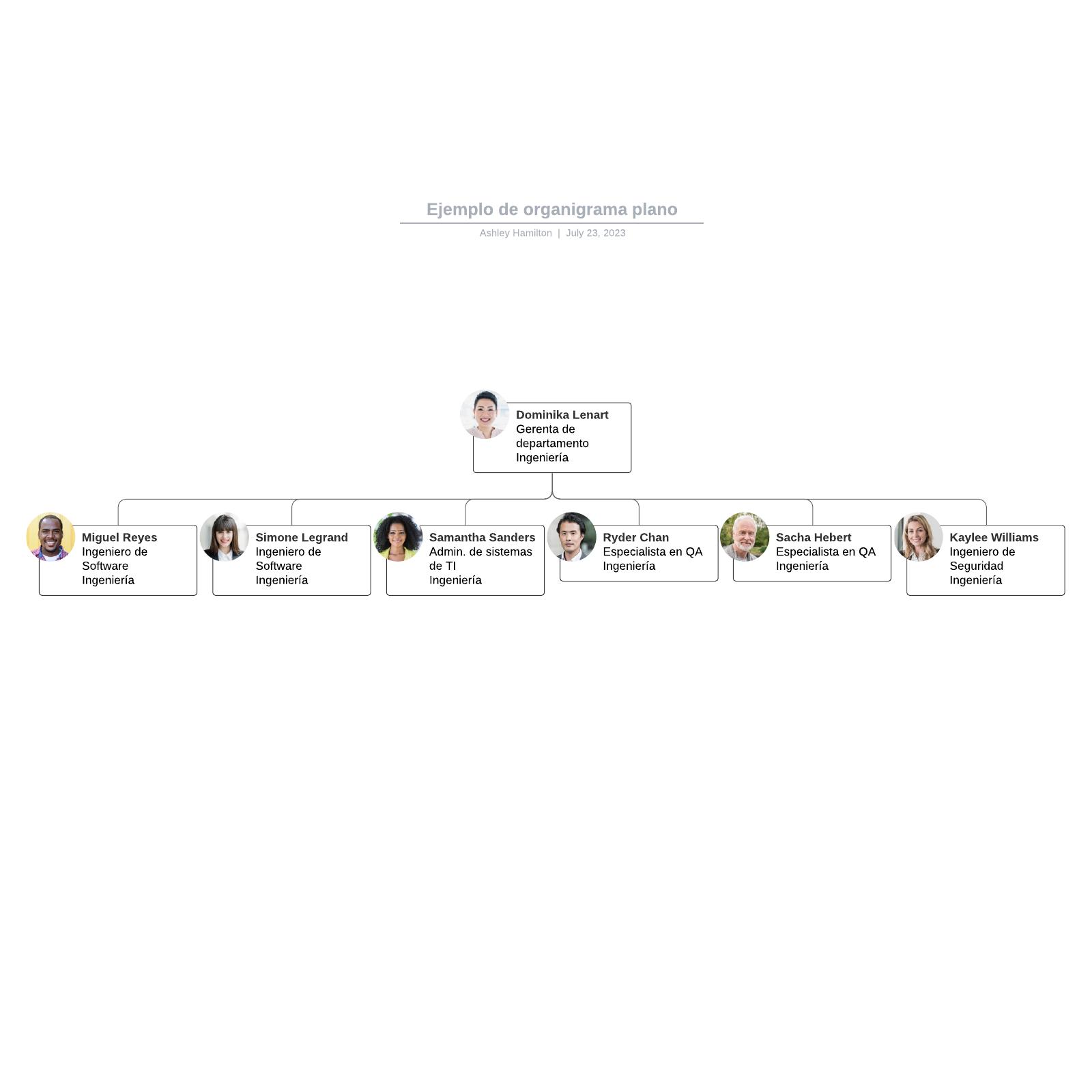 Ejemplo de organigrama plano