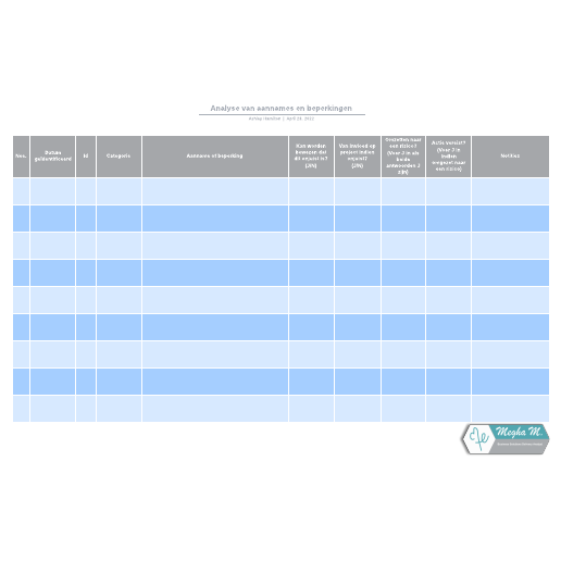 Analyse van aannames en beperkingen