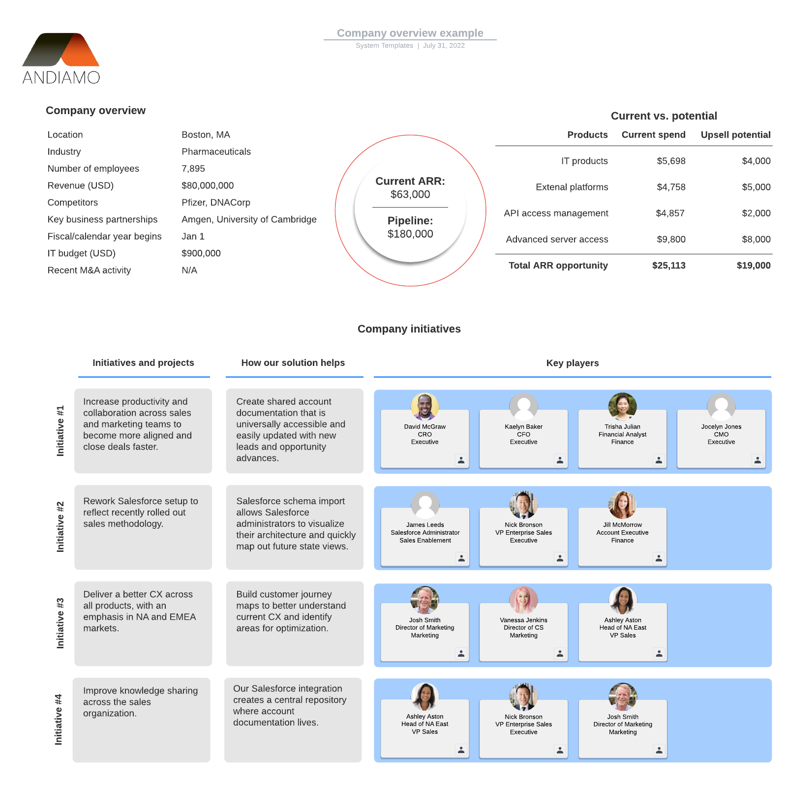 Company overview example
