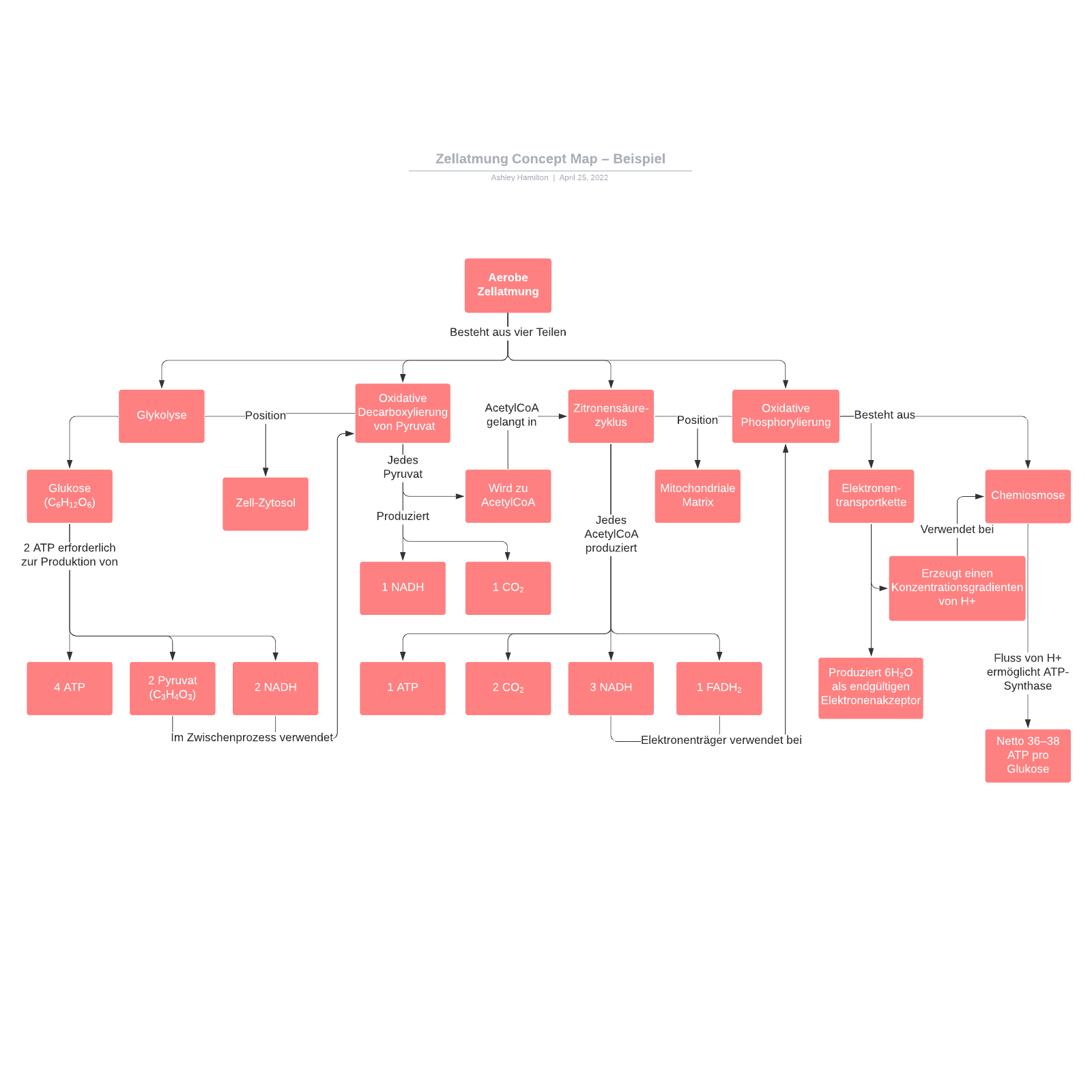 Concept Map Beispiel - Zellatmung