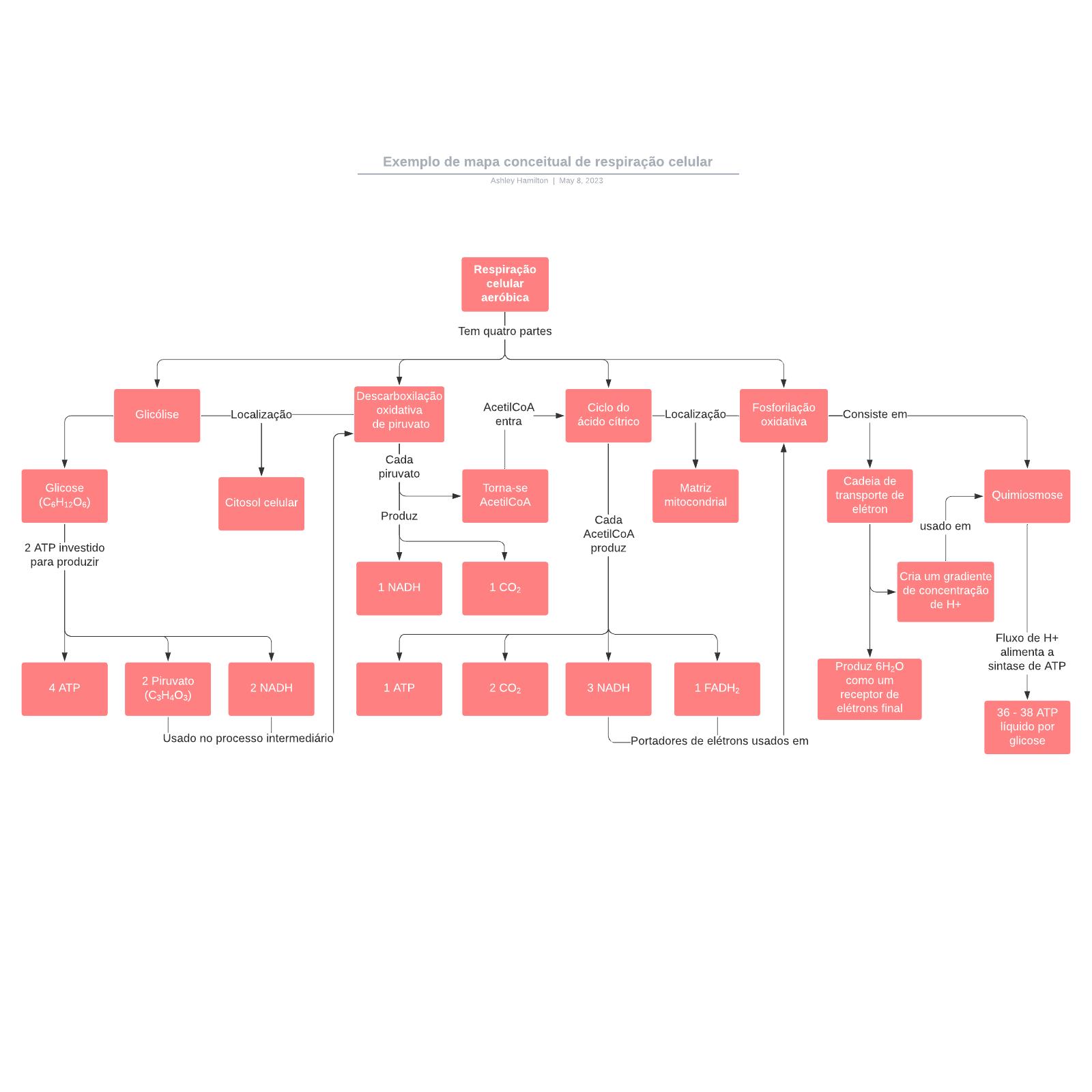 Exemplo de mapa conceitual de respiração celular