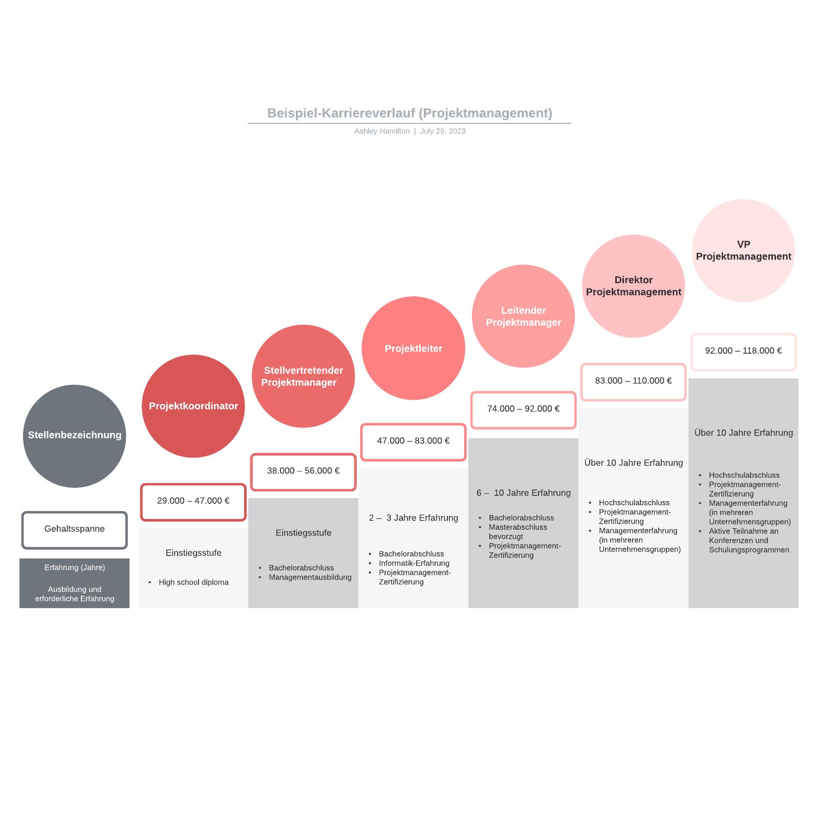 Karriereverlauf (Projektmanagement) Beispiel