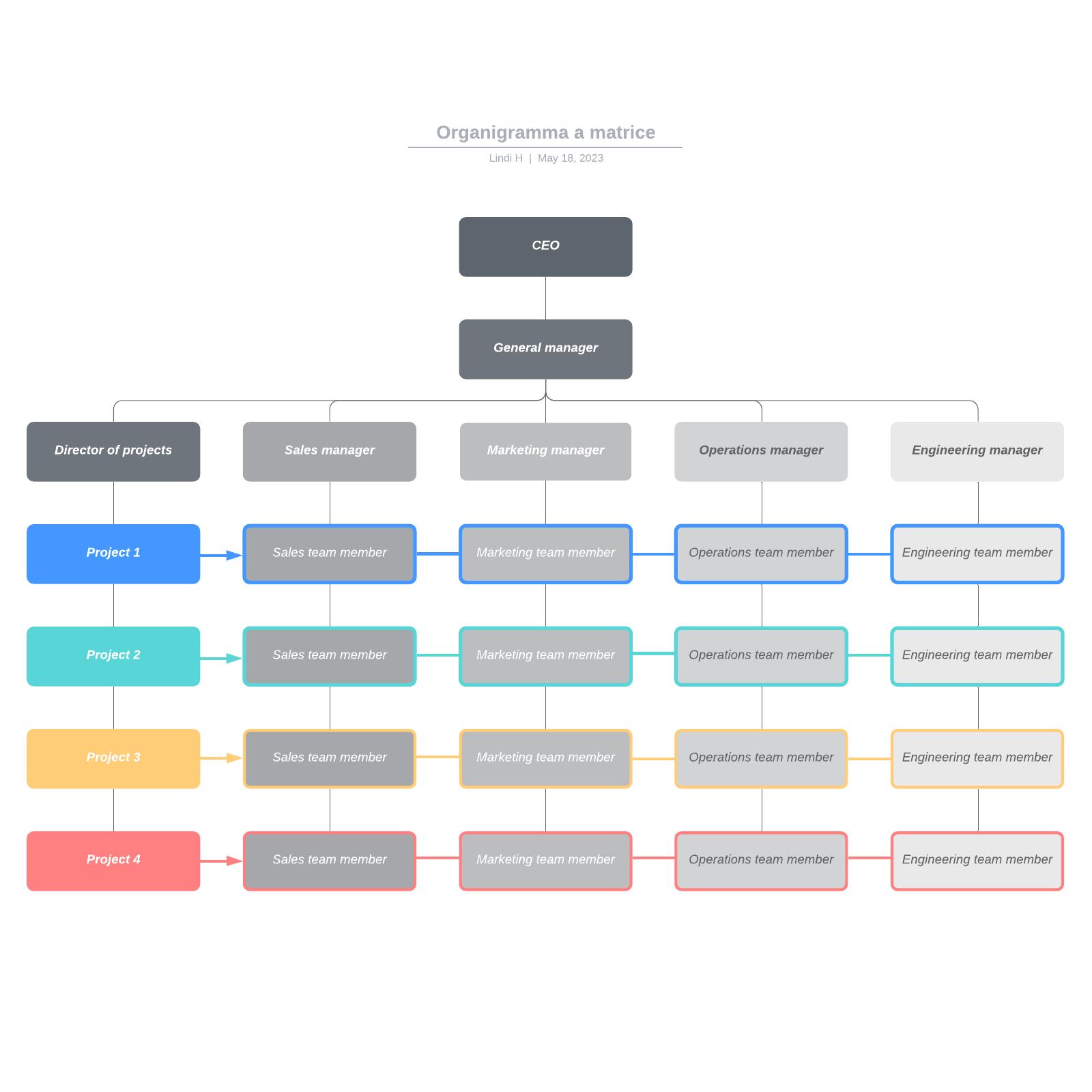 Organigramma a matrice