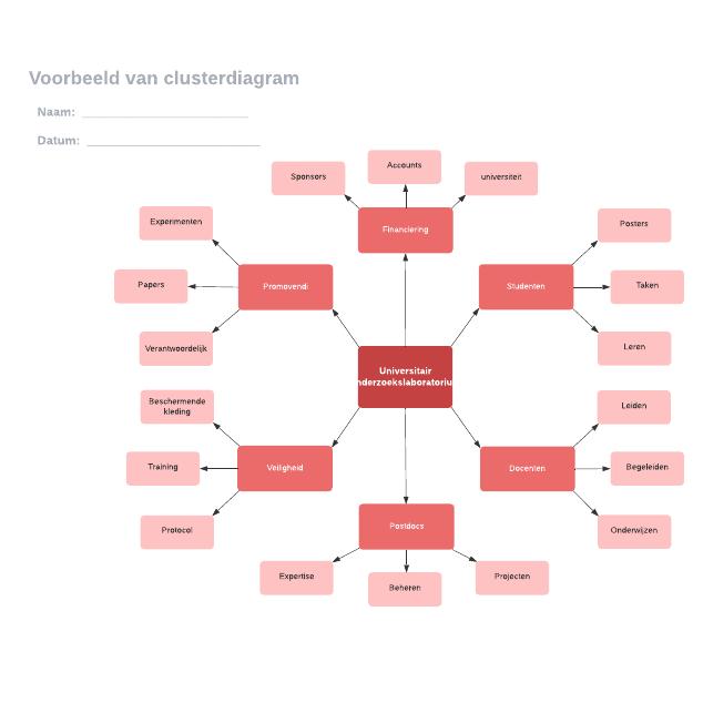 Voorbeeld van clusterdiagram