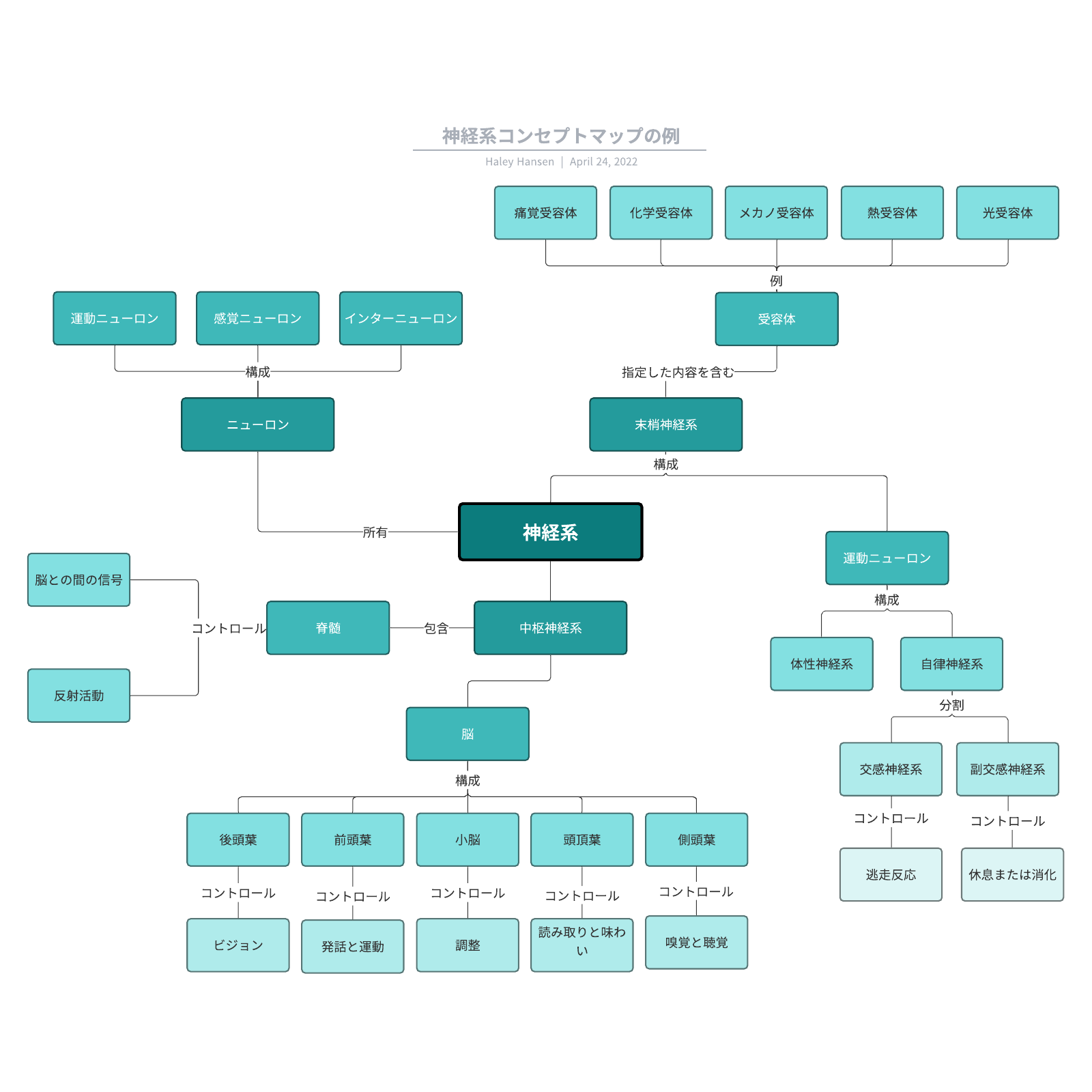 コンセプトマップの事例でわかるコンセプトの可視化方法テンプレ