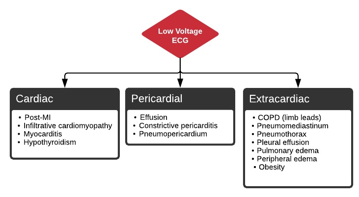 Differential Diagnosis of Low Voltage ECG