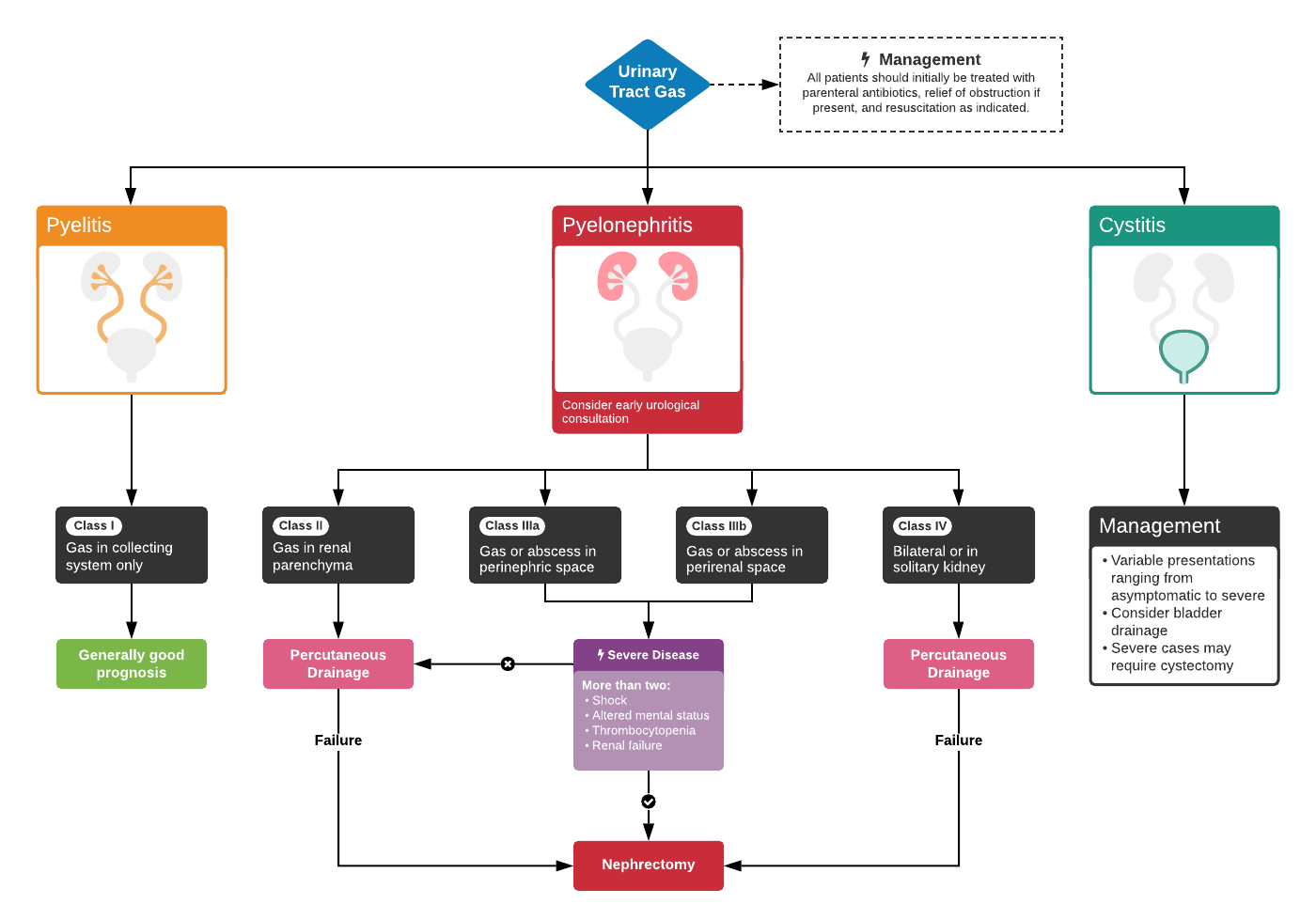 An Algorithm for the Evaluation and Management of Emphysematous Urinary Tract Infections