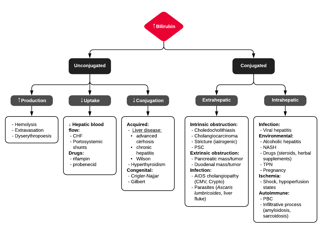 A System for Hyperbilirubinemia