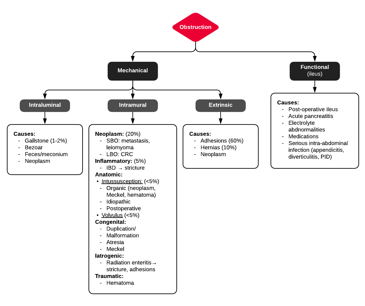 A System for Bowel Obstruction
