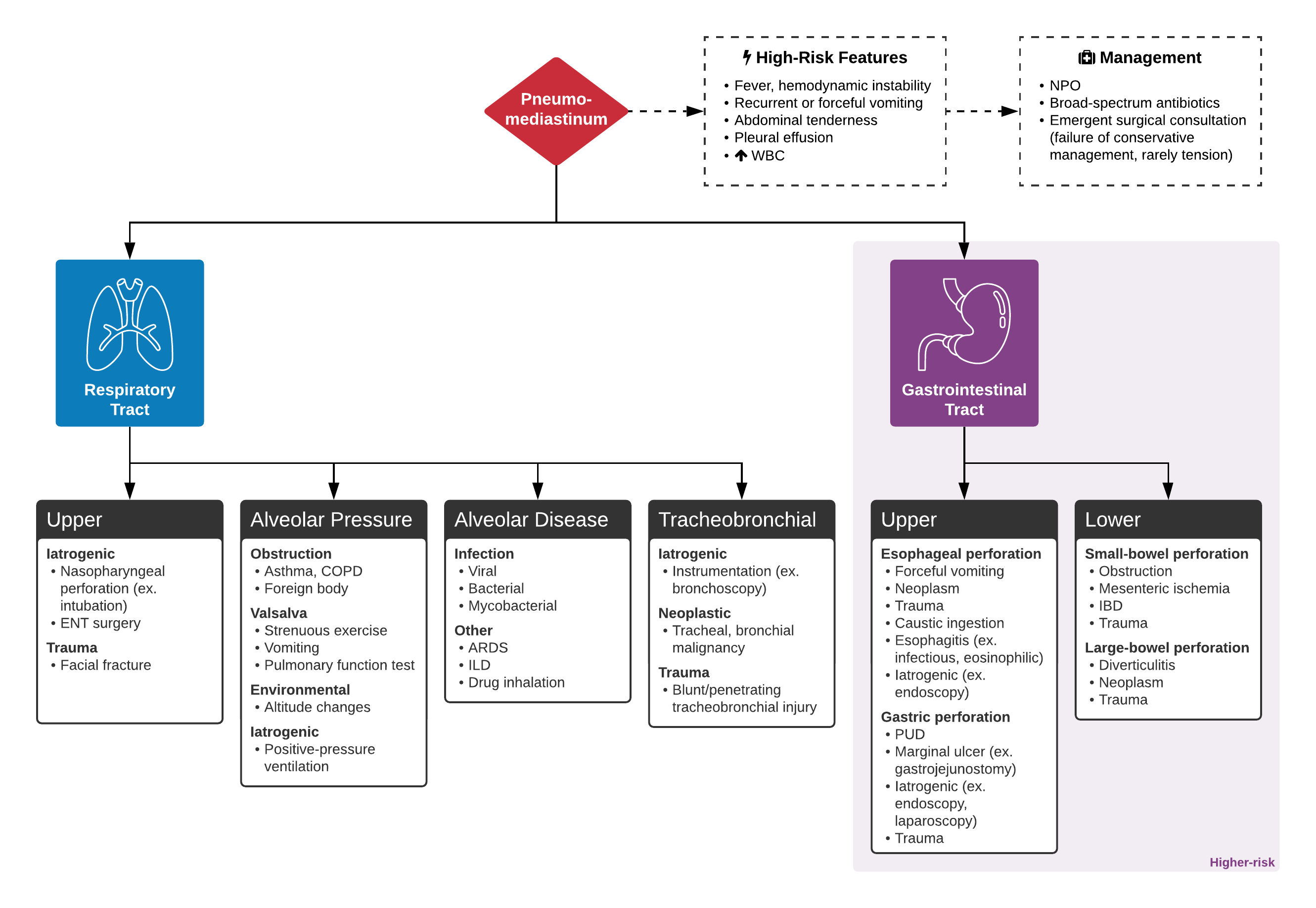 An Algorithm for the Evaluation of Pneumomediastinum