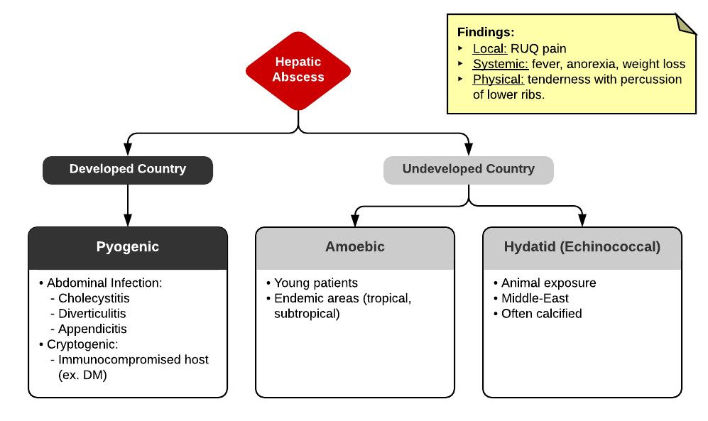 Differential Diagnosis of Hepatic Abscess
