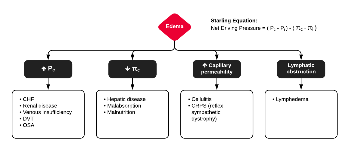 Mechanisms of Lower Extremity Edema
