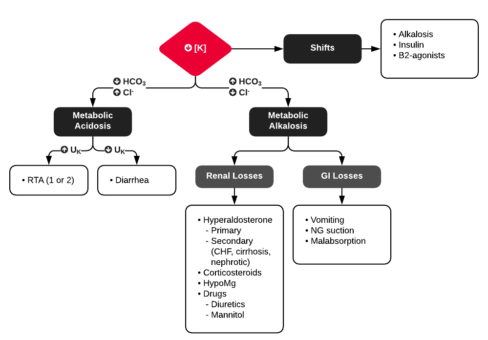 Differential Diagnosis and Evaluation of Hypokalemia