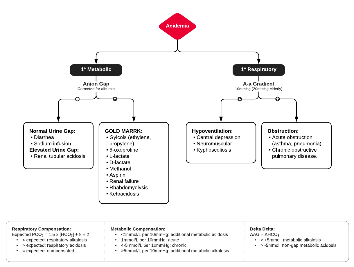 Algorithm for Evaluation of Acidemia