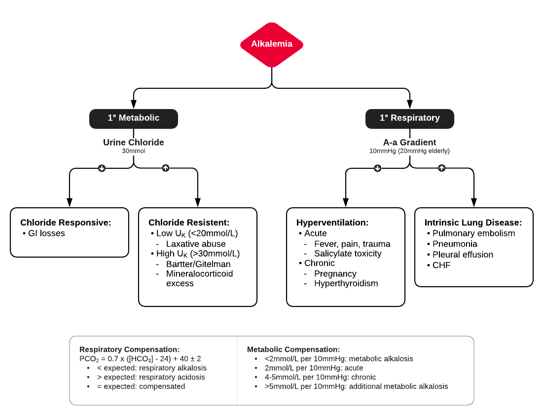 Algorithm for Evaluation of Alkalemia