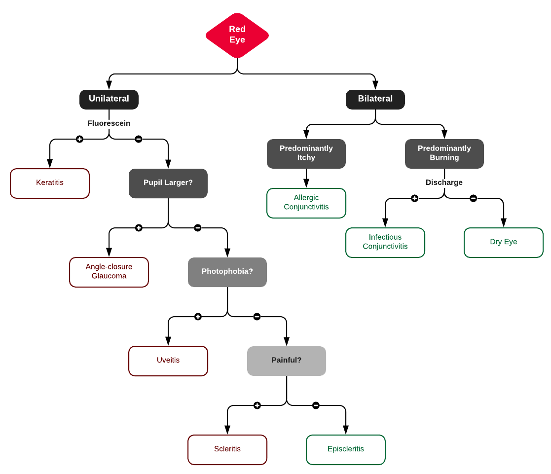 Algorithm for the Evaluation of the Red Eye
