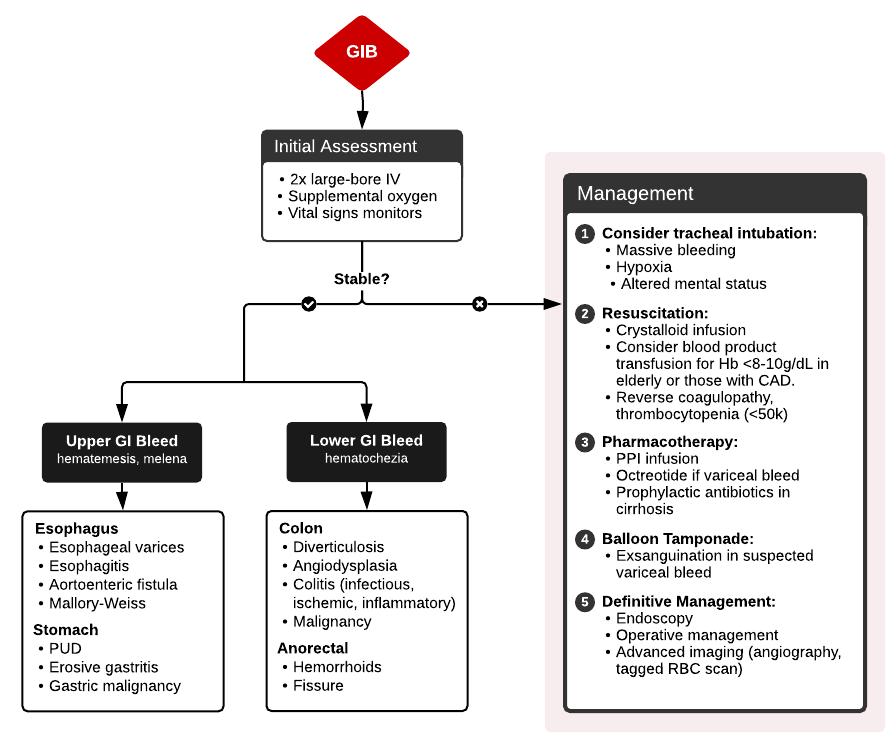 Evaluation and Management of Gastrointestinal Bleeding