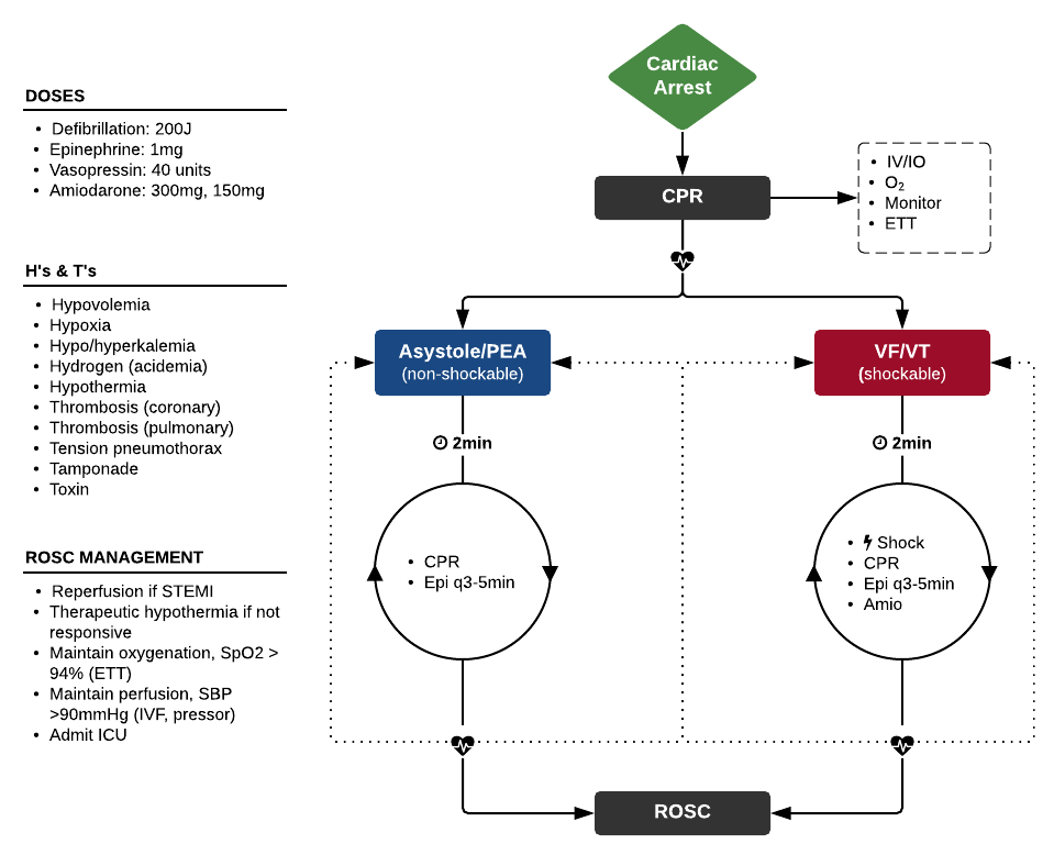 ACLS Cardiac Arrest Algorithm