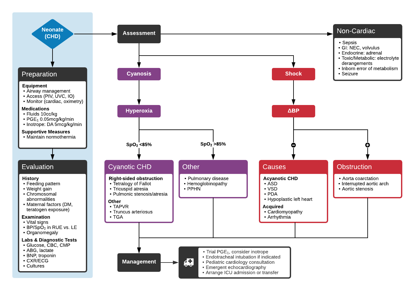 Algorithm for the Evaluation of Neonatal Congenital Heart Disease