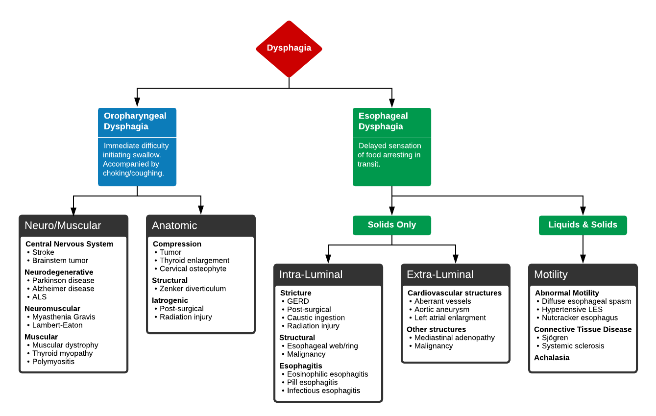 Algorithm for the Evaluation of Dysphagia