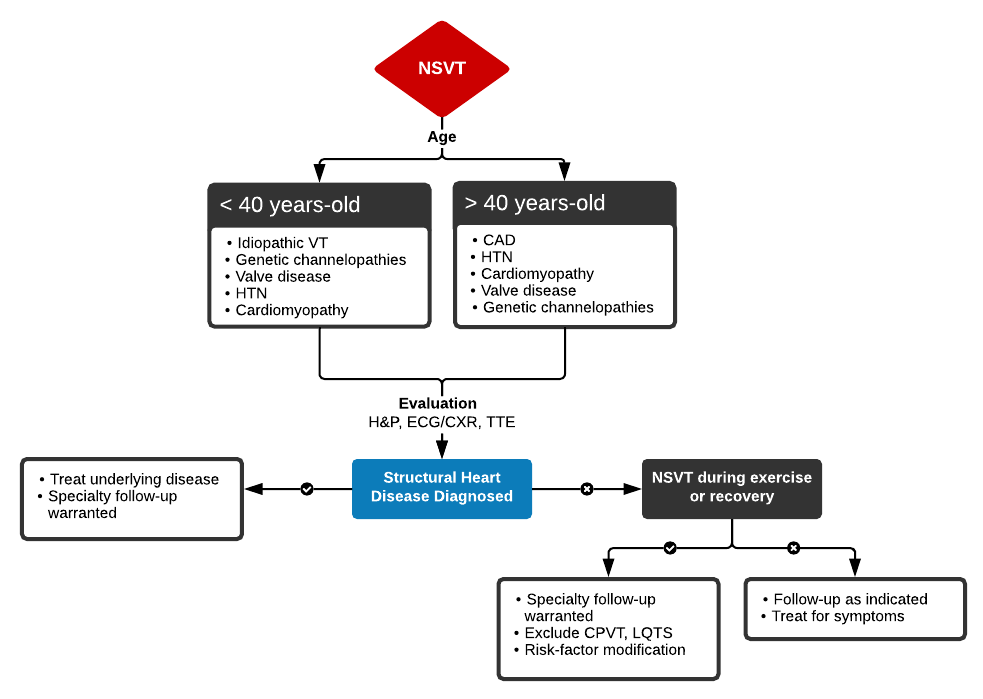 Algorithm for the Evaluation of Nonsustained Ventricular Tachycardia