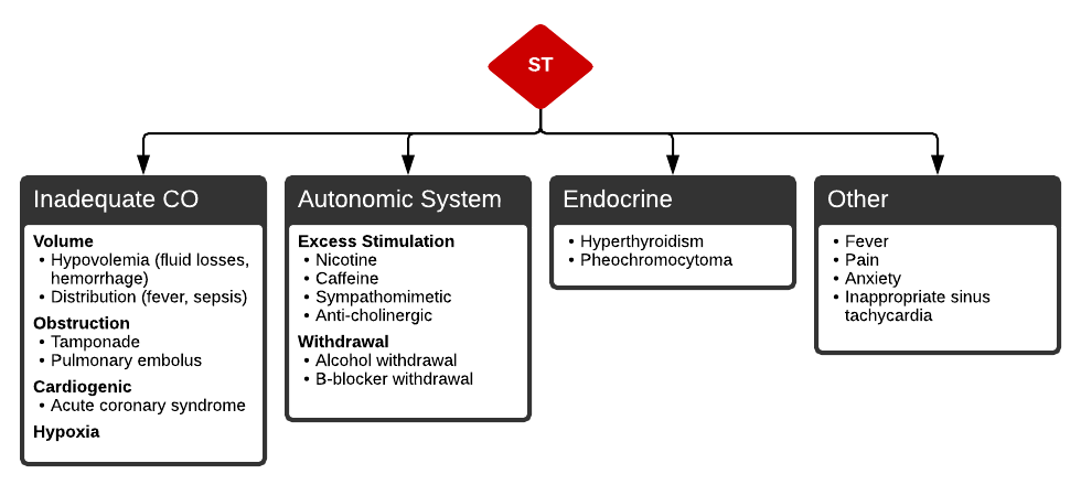 Algorithm for the Evaluation of Sinus Tachycardia