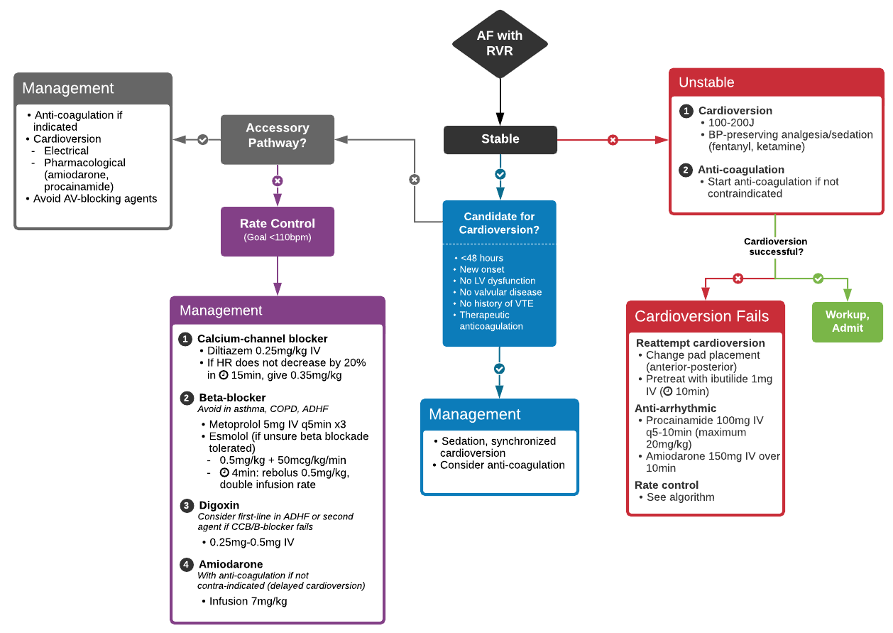 Algorithm for the management of atrial fibrillation with rapid ventricular response