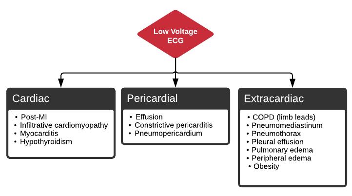 Low Voltage ECG